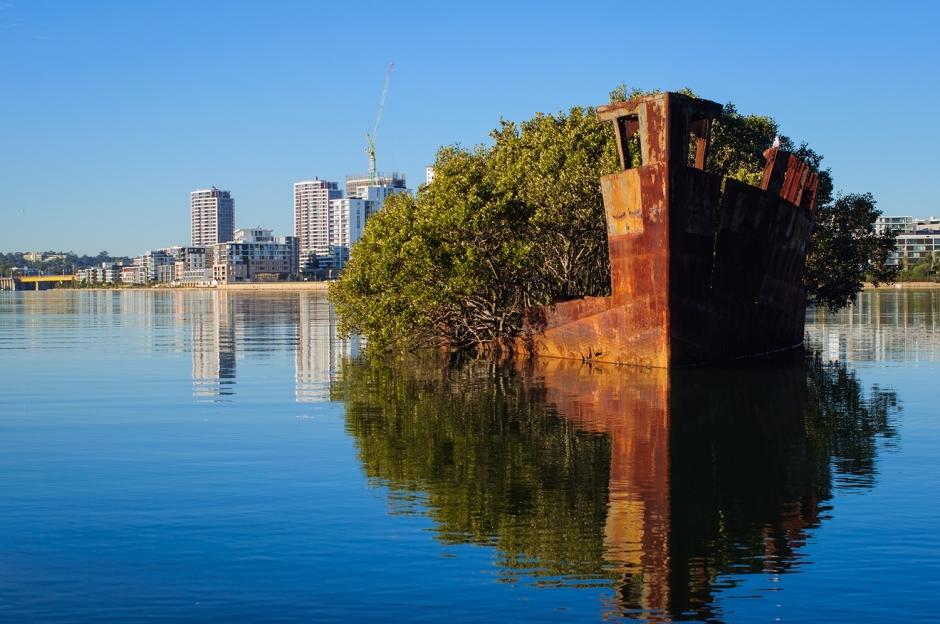 SS-Ayrfield-Shipwreck-Landscape-Homebush-Bay-01-nggid03377-ngg0dyn-0x0x100-00f0w010c010r110f110r010t010